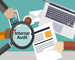 Presentation on Internal Audit