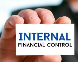 Presentation on Internal Financial Control